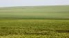 VESTE BUNĂ pentru fermierii moldoveni. Anunţul Ministerului Finanţelor