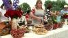 Festivalul Cireșelor la Ruseștii Noi. Vizitatorii au avut parte de mese copioase și multă distracție