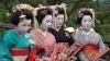 Sushi, origami și kimono, elementele principale ale festivalului culturii japoneze, desfărșurat la Chișinău
