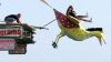 Sărituri în apă cu cele mai ciudate aparate de zbor. Zeci de oameni au participat la Birdman of Bognor