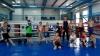 Sport de performanţă în satul Grimăncăuţi. Antrenorul de box care dă lumii sportivi de excepţie