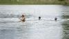 """Storși de energie, dar binedispuși! Sute de oameni au participat la competiția de înot """"Sea Mile"""""""