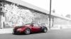 Rarităţi şi exclusivităţi: O colecţie de 24 de automobile va fi vândută în SUA (VIDEO)