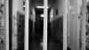 Şapte moldoveni, trataţi ca robii în Rusia. Ce sentinţă au primit traficanţii