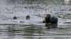 A vrut să devină erou, dar nu a mai ieșit la suprafață! Un bărbat din Transnistria, înecat în Nistru