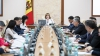 Zâmbitoare, dar cu vești pesimiste. Natalia Gherman a prezidat prima ședință a Guvernului interimar (FOTO)
