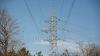 Problema aprovizionării cu energie electrică, în atenția deputaților