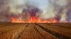 Combină cuprinsă de flăcări în toiul secerişului. Incendiul s-a extins pe câteva hectare de grâu