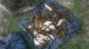 Au rămas fără plase și pește! Ce au făcut 12 pescari în zona de frontieră