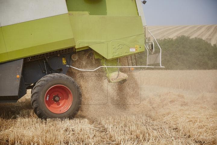 Subvenţii pentru investiţii în agricultură: AIPA a reluat procesul de plată a cererilor recepționate în anul 2019