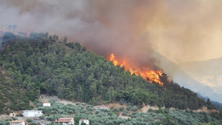 Incendiile de lângă Atena, fac VICTIME! Poliția a reținut două persoane, bănuite de incendiere