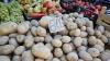 Cartofii s-ar putea scumpi din cauza secetei. Cât va costa un kilogram