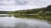 Miros insuportabil şi pericol de infecţie. Fenomen dezastruos pe un lac din Bălţi (VIDEO)