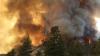Incendiile de vegetaţie devin un pericol pe vreme toridă. Ce recomandă pompierii