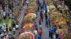 Aranjamente florale SPECTACULOASE. A început Festivalul Florilor în oraşul Medellin (VIDEO)