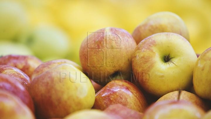 Bătaie pentru merele moldoveneşti. Ce s-a întâmplat cu două tone de fructe la Sankt Petersburg (VIDEO)