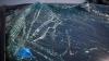 ACCIDENT TERIBIL la Edineţ. Un bărbat a murit pe loc după ce maşina s-a izbit într-un copac (VIDEO)