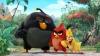 PREMIERĂ MONDIALĂ! Faimoasele păsări furioase vor apărea pe micile ecrane (VIDEO)
