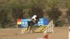 Zeci de cai de diferite rase şi-au arătat măiestria la sărituri peste obstacole la Budeşti