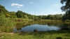 SE CER MĂSURI URGENTE! Un mare lac din Moldova riscă să dispară