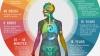 PUBLIKA ONLINE: Cum poţi să creezi un infografic interesant şi eficient