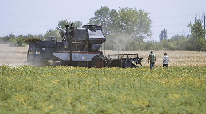 Raport nefavorabil al Băncii Mondiale. Andrian Candu: Politicile în agricultură vor fi revăzute