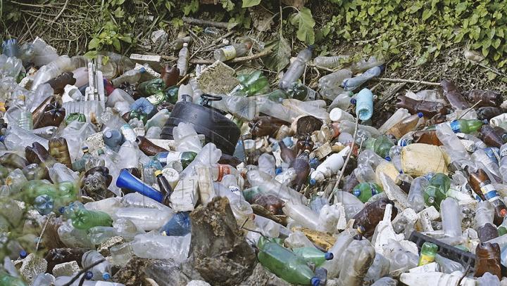 Fotografia care a sensibilizat întreaga lume! Ce face o fetiţă printre gunoaie (FOTO)
