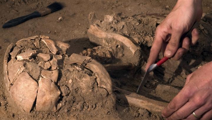 Descoperire importantă pentru arheologi. A stat în pământ 6000 de ani, dar s-a păstrat foarte bine