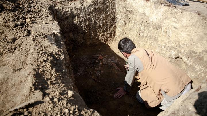 DESCOPERIRE UIMITOARE în Vechiul Regat Egiptean. Cercetătorii fac dezvăluiri interesante
