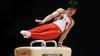 Japonezii sunt noii campioni mondiali la gimnastică artistică