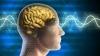 Studiu: La fel ca amprenta digitală, activitatea cerebrală este proprie fiecărui individ