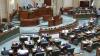 Senatul României a adoptat legea privind utilizarea canabisului în scopuri medicale. Documentul urmează să treacă şi de Camera Deputaţilor