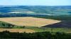Subvenţii pentru agricultură acordate fraudulos. Au fost deschise 34 de dosare penale