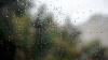 METEO 16 noiembrie. Sinopticienii anunţă ploi slabe pe arii extinse