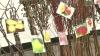 Eveniment nou în calendar. Satul în care a avut loc primul festival dedicat puieţilor de pomi fructiferi