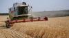 Pachetul agricol, examinat în lectură finală de Parlament! Ce beneficii va aduce fermierilor