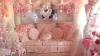 Cum arată casa lui Barbie reală. Povestea femeii OBSEDATE de roz (VIDEO)