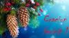 Sărbători magice! În ajun de Crăciun descoperă cele mai frumoase mesaje pentru a-i felicita pe cei dragi