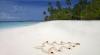 HORROR. Ce se întâmplă în această perioadă pe Insula Crăciunului (VIDEO)