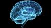 Oamenii de ştiinţă au descoperit dovada că inteligenţa are o bază genetică