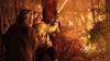 """""""Sunt norocos că am rămas în viaţă"""". Incendiile de pădure fac ravagii din sud-estul Australiei"""