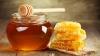 Întăreşte-ţi imunitatea. Efectele miraculoase ale produselor apicole