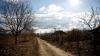 Viaţa bate filmul! Condiţiile în care locuiesc două familii din raionul Soroca (VIDEO)