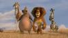 """Trei animale exotice ÎL BAT MĂR pe un beţivan care a agresat """"zebra"""" (VIDEO)"""