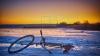 Fotografia Zilei. Iarnă în Bucovina