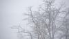 Cer noros și ceață. Meteorologii anunţă care vor fi maximele termice la sfârșitul săptămânii
