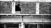 BILANŢ SUMBRU Al FURTUNII: Localităţi fără lumină, acoperişuri distruse şi copaci doborâţi