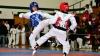Spectacol de zile mari. Cei mai buni luptători de taekwon-do din ţară i-au arătat ce pot lui Aaron Cook