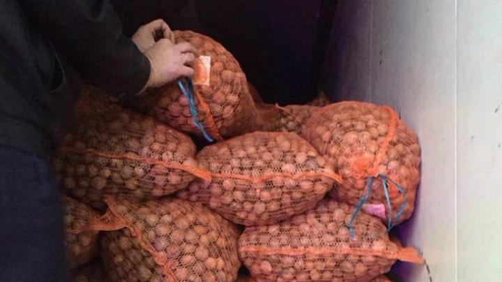 Contrabandă de proporții. Oamenii legii au stopat afacerea de sezon a unui moldovean (FOTO)
