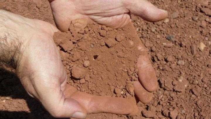 CATASTROFAL! Locuitorii unor sate au ajuns să consume argilă şi ciuperci toxice